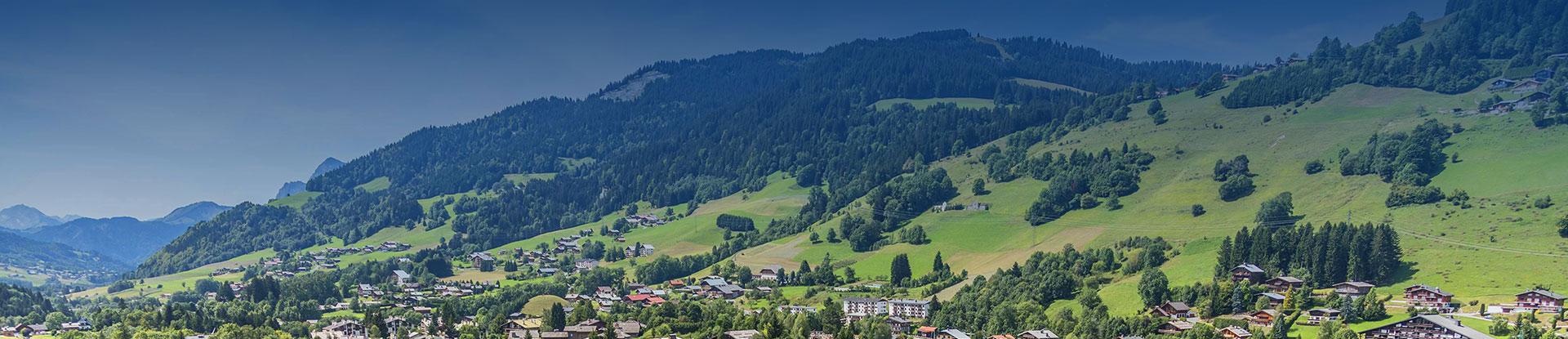vue panoramique Jaillet