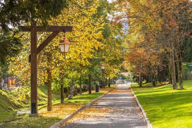 automne allée Cavalière